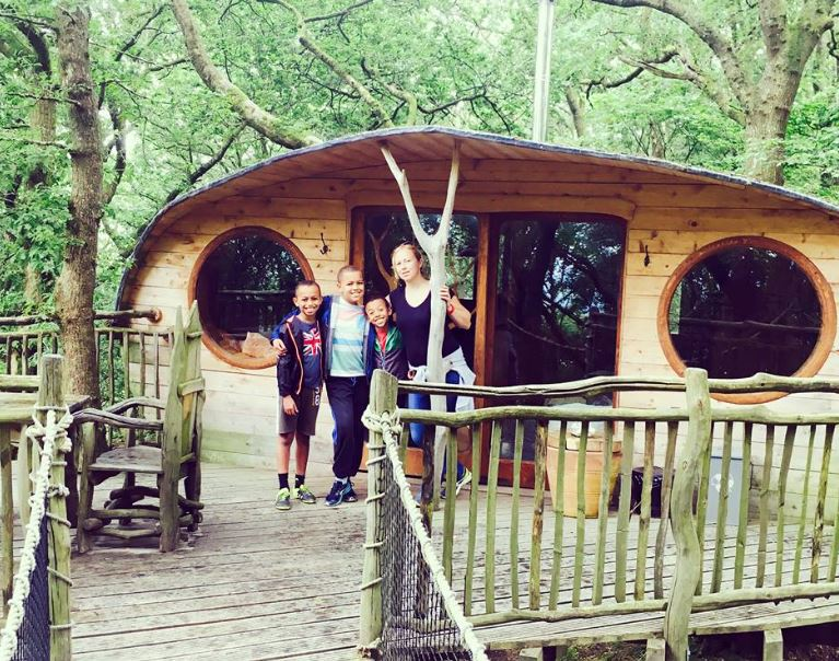 treehouse in the woods on a glamping site